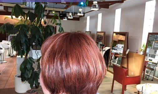 暖色系カラーの代名詞「オレンジブラウン」。寒い時期にしっくりなじむ。