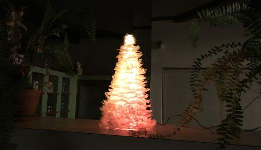 ちょっぴりクリスマスモードになったウプスです。
